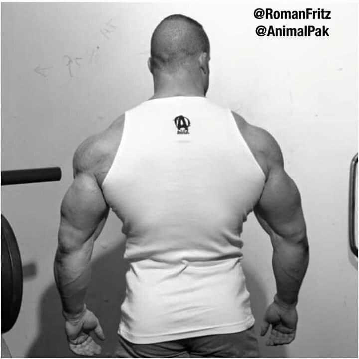 romanfritz_2