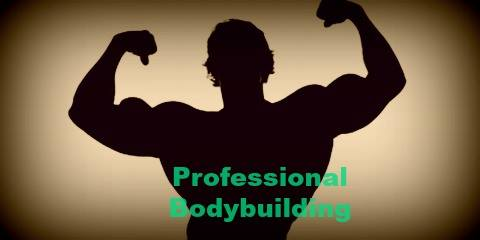 professional-Bodybuilding