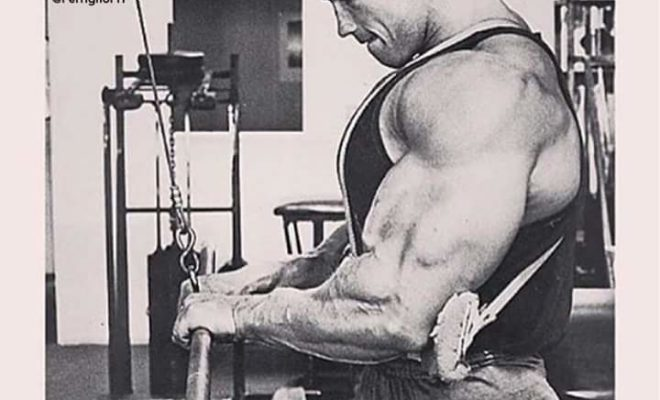 bodybuilding-motivation-arnold
