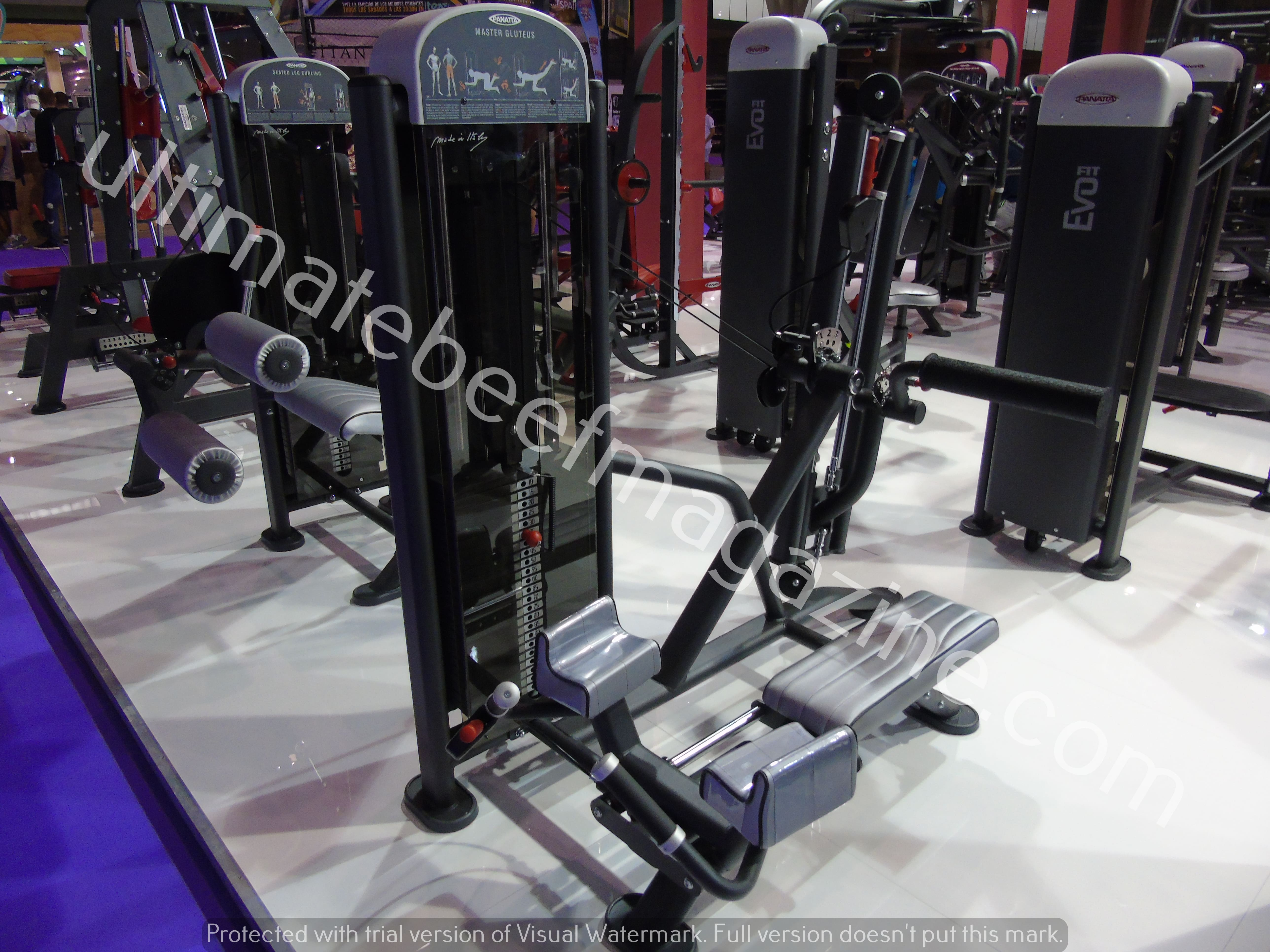 2018 arnold classic europe by underbody