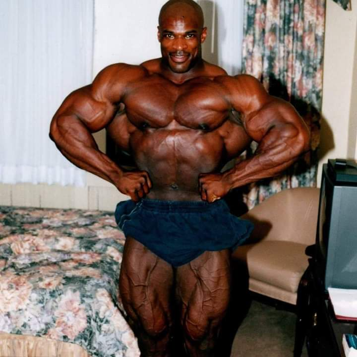 ronnie coleman mr olympia pro ifbb