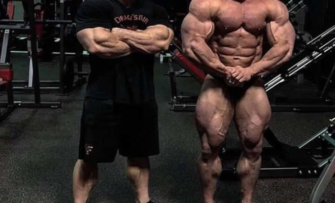 road to 2019 arnold classic ohio luke sandoe pro ifbb