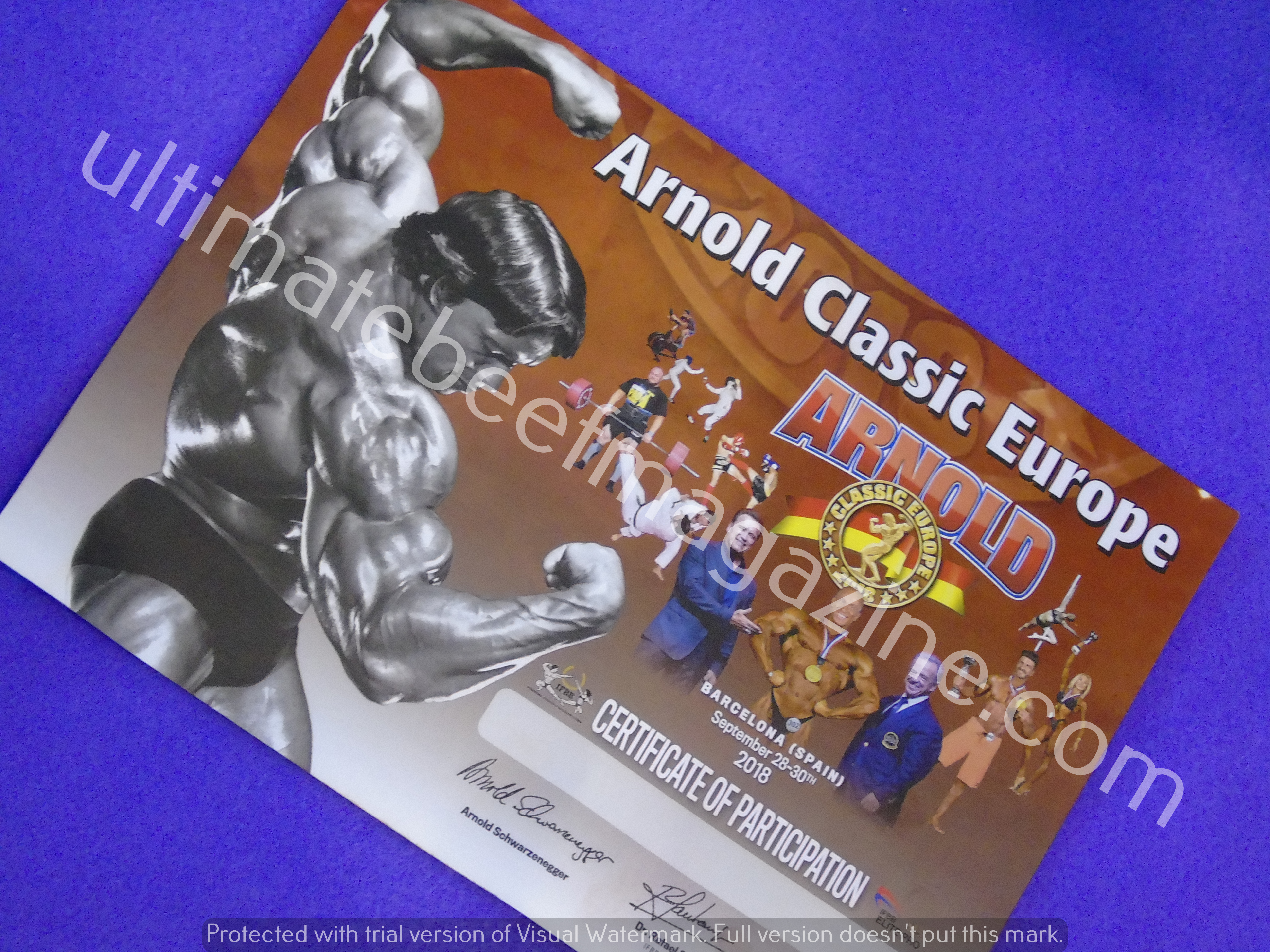 2018 arnold classic europe by underbody2018 arnold classic europe by underbody