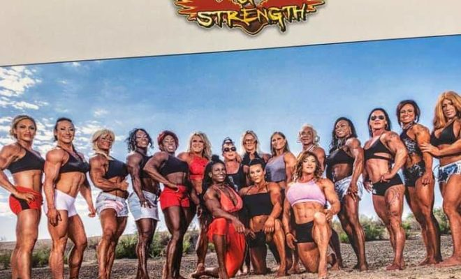 calendario ifbb pro league 2019