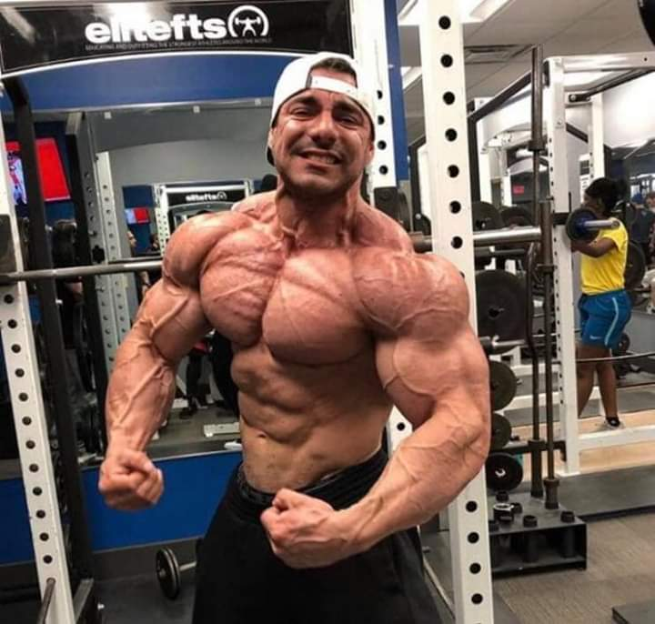 2019 arnold classic ohio rafael brandao 1 day out