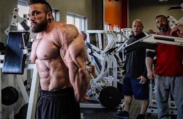luke sandoe pro ifbb 2019 arnold classic ohio 1 day out