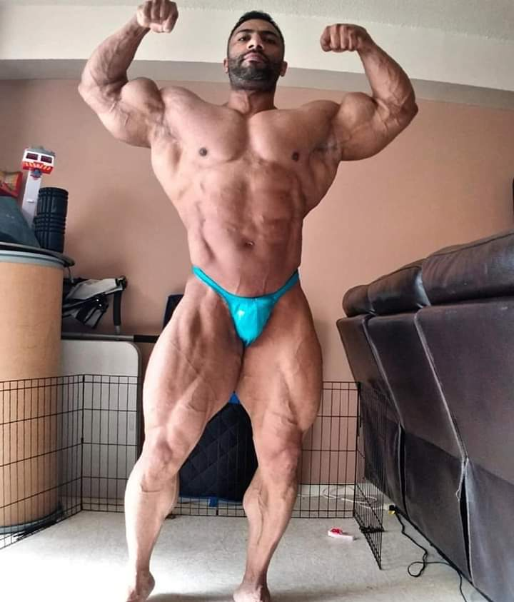 justin rodriguez pro ifbb road to 2019 new york pro ifbb 2019