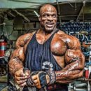 ronnie coleman pro ifbb mr olympia