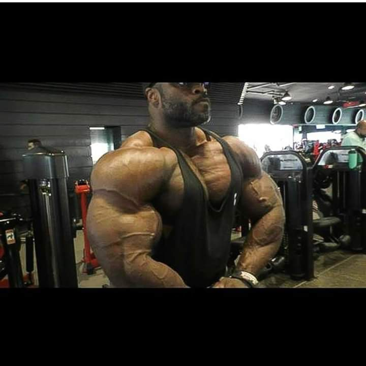 brandon curry pro ifbb road to 2019 mr olympia