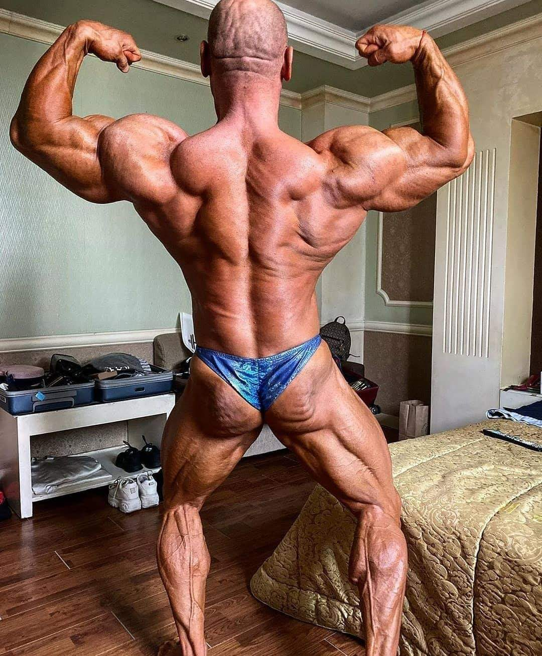 2019 ifbb monsterzym pro men's bodybuilding