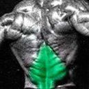 xmas tree pose