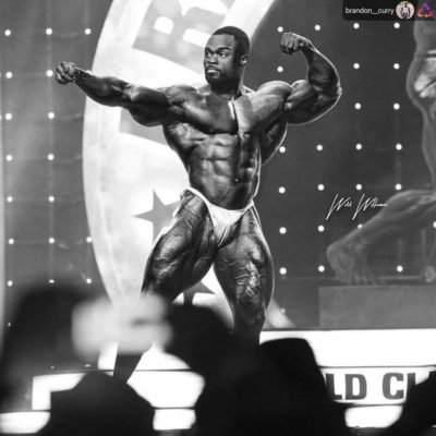 brandon curry pro ifbb mister olympia 2019