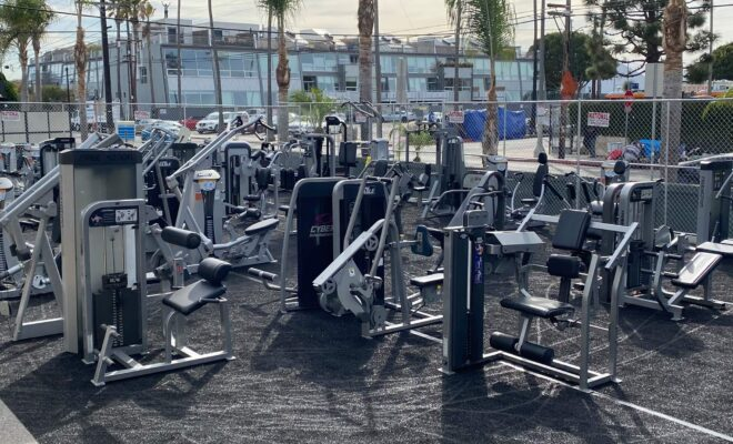 gold's gym di venice in california