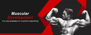 VISITA musculardevelopment.co!